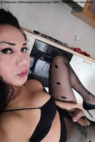 Trans Escort Adriana Paulett selfie hot Trans Escort 20