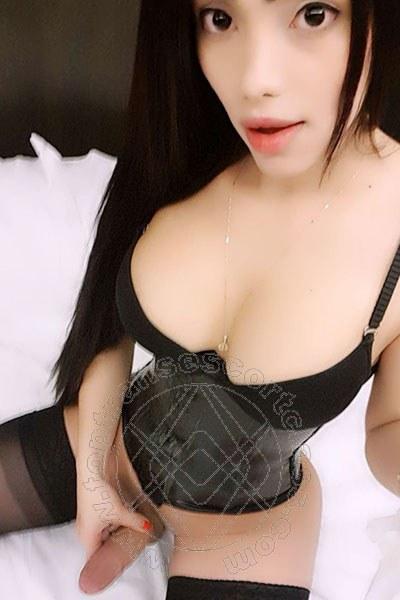 Trans Escort Pamelita selfie hot Trans Escort 4