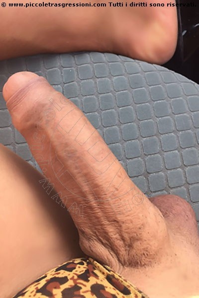 Trans Escort Camilla . S selfie hot Trans Escort 18