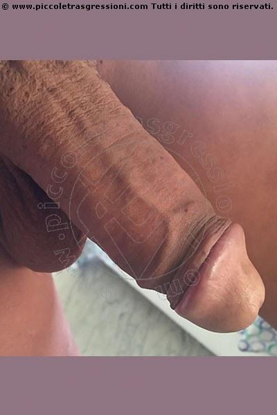 Trans Escort Camilla . S selfie hot Trans Escort 16